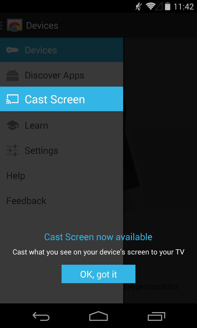 Cast Screen